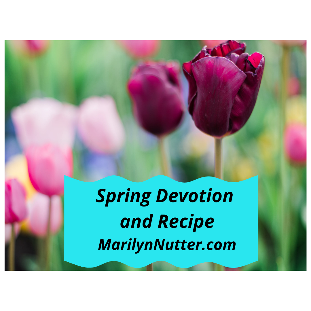 Subscribe To My Newsletter and Blog! This month's freebie is a recipe as unusual as Spring weather and a devotion for quiet reading.